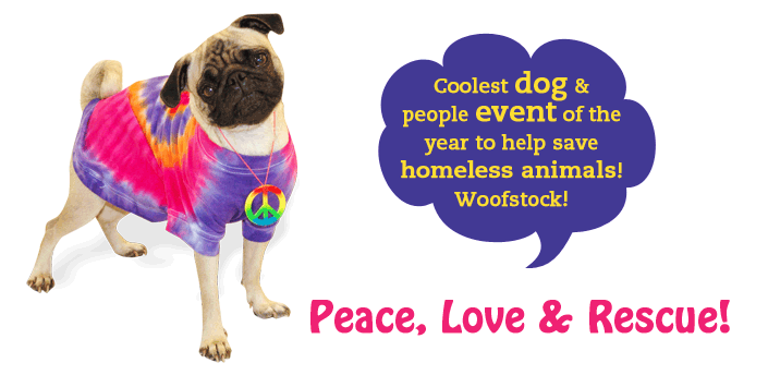 Coolest dog & people event of the year to help save homeless animals! Peace, Love & Rescue!