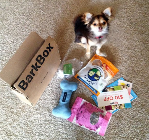 Bark Box For Cats And Dogs