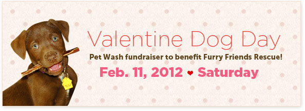 Valentine Dog Day! Pet Wash fundraiser to benefit Furry Friends Rescue!Feb. 11, 2012 / Saturday