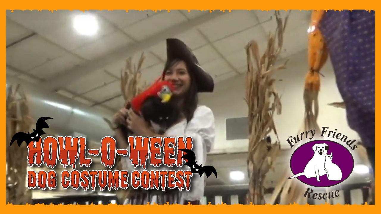 Howl-o-ween dog costume contest 2019
