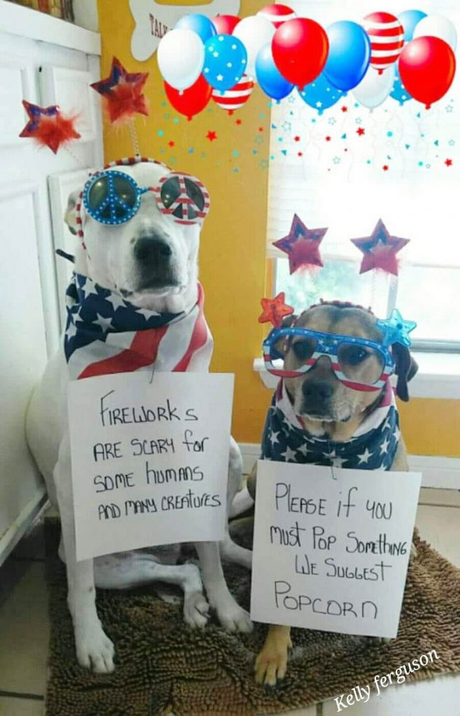 Fireworks are scary for some humans and many creatures. Please if you must pop something we suggest Popcorn.