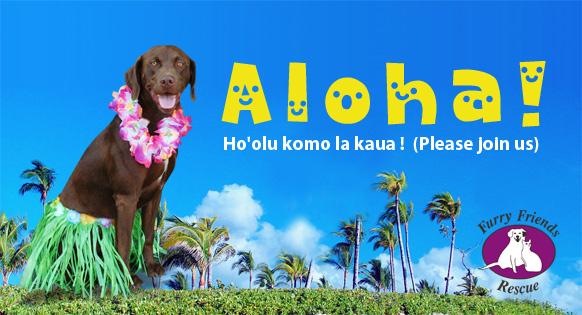 hawaii dog adoption