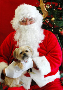 Ho, Ho, Ho!  Bring your furry kid to meet Santa Paws!