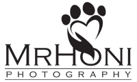 MrHoni Photography