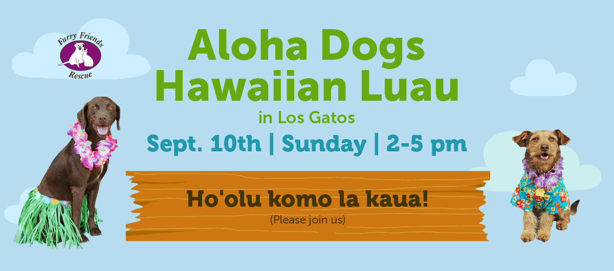 Furry Friends Rescue presents Sunday, Sept. 10th, 2-5 pm, Aloha Dog Event in Los Gatos