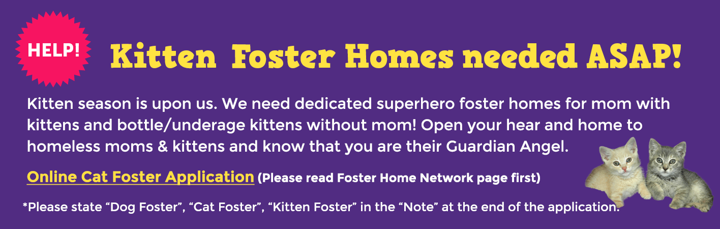 "Kitten Foster Homes needed ASAP! Kitten season is upon us. We need dedicated superhero foster homes for mom with kittens and bottle/underage kittens without mom! Open your hear and home to homeless moms & kittens and know that you are their Guardian Angel. 	Online Cat Foster Application (Please read Foster Home Network page first) *Please state Dog Foster, Cat Foster, Kitten Foster in the ""Note"" at the end of the application."