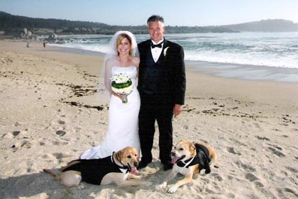 Desiree and Archie's Wedding picture